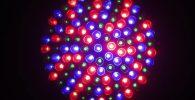 Luz de iluminación leds para cultivo hidropónico de interior en casa