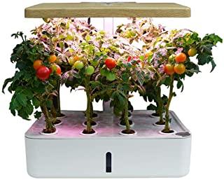 Sistema de crecimiento para plantas en hidroponía