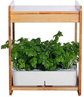 Kit de jardinería para cultivo de plantas aromáticas en casa