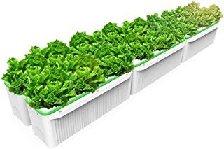 Sistemas de cultivo hidropónico