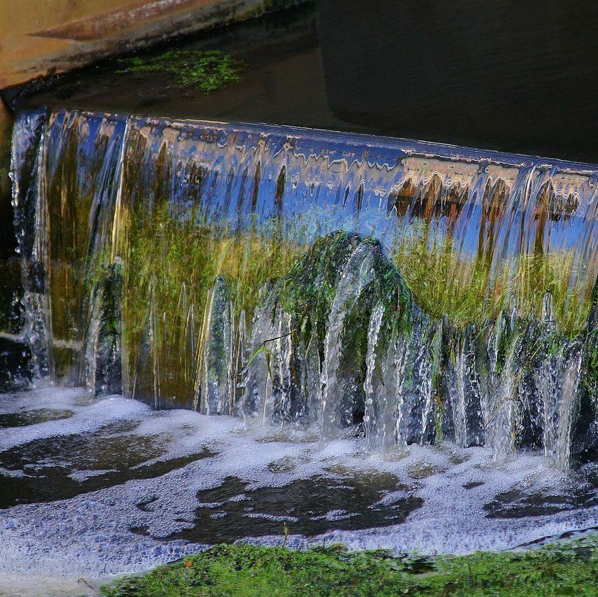 Sistemas de riego en cultivo de hidroponía